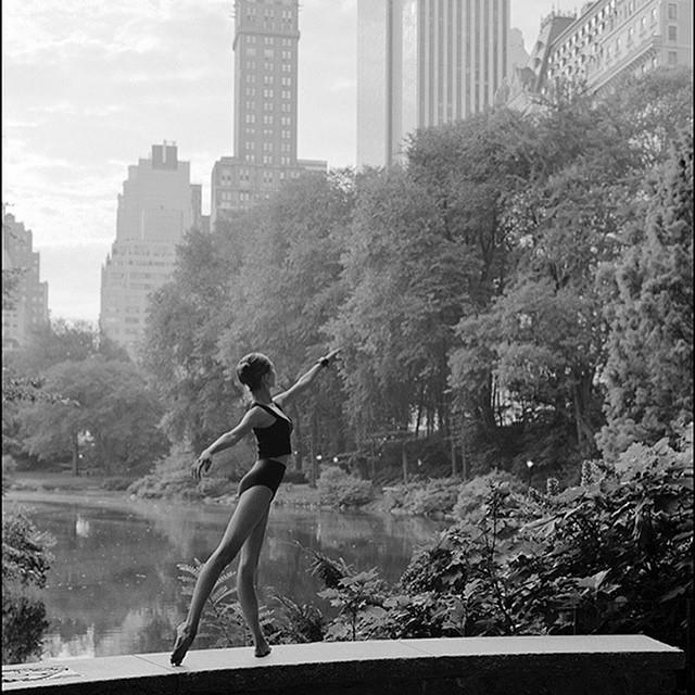 ballerina-project6