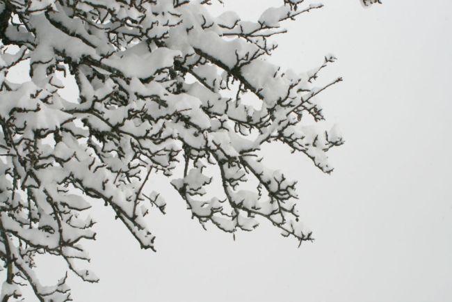 sallanches-neige-17