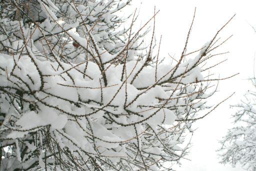 sallanches-neige-20