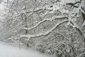 sallanches-neige-21