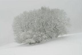 sallanches-neige-24