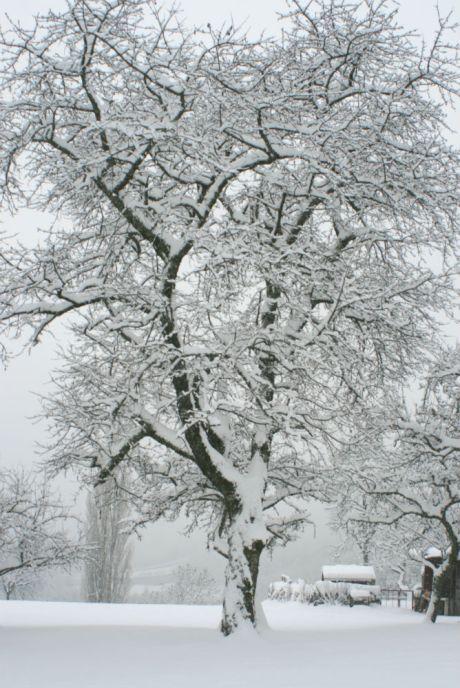 sallanches-neige-3