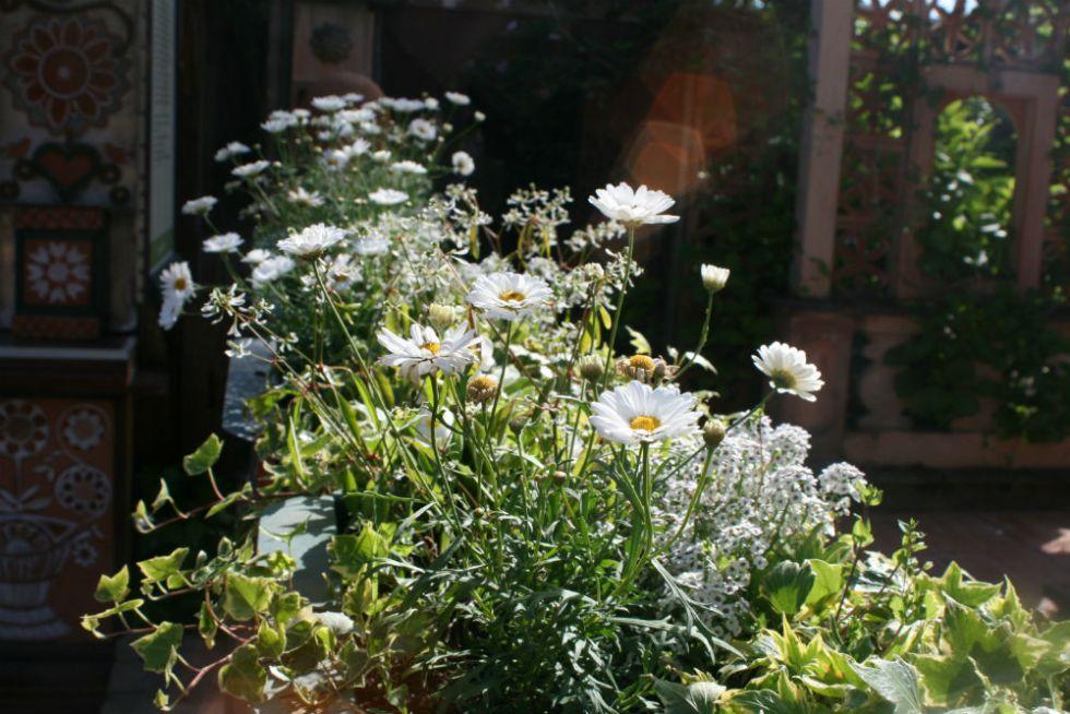 jardins-secrets-12