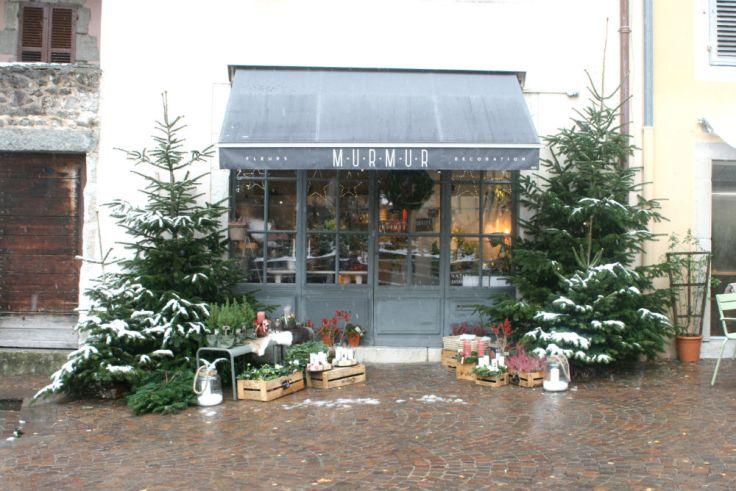 Annecy-neige-26
